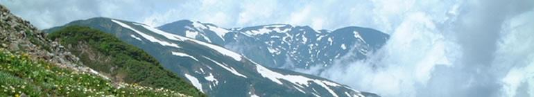 主の十字架クリスチャンセンター東京アンテオケ教会 header image 2